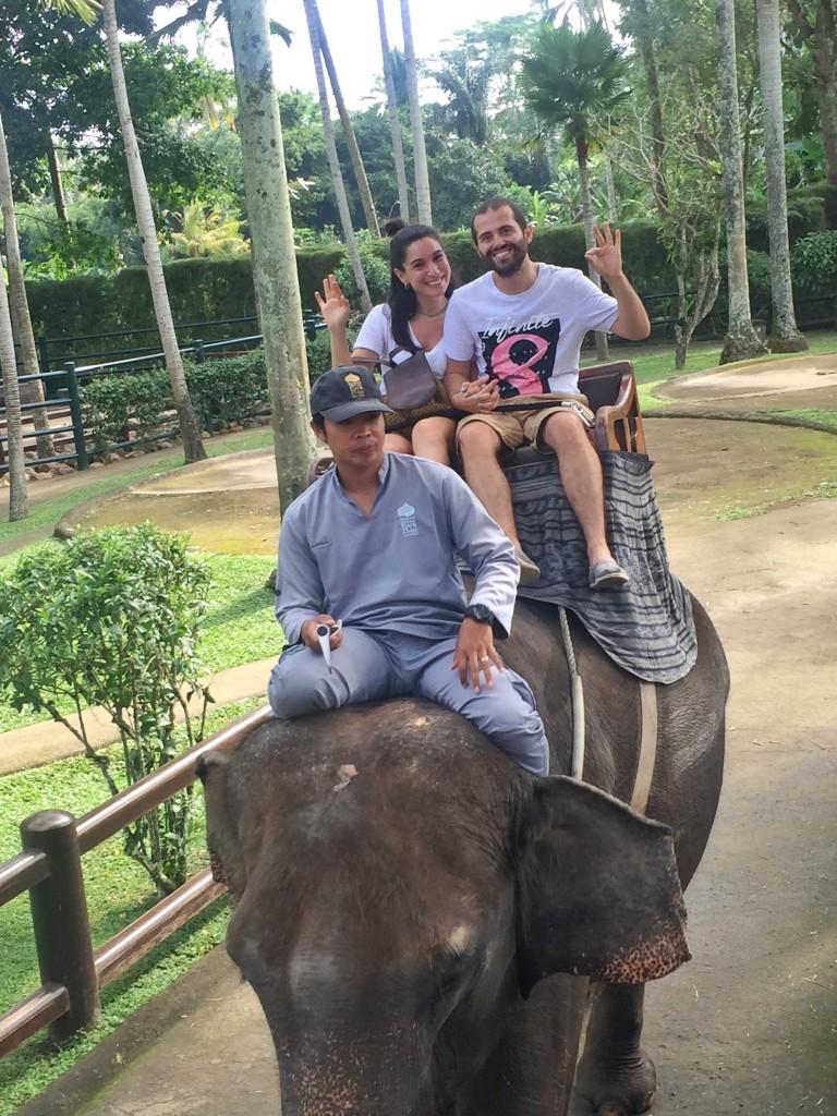 elephant-safari-park-bali